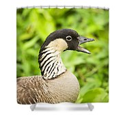 Nene Goose Shower Curtain