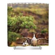 Maui Hawaii Haleakala National Park Nene Hawaiian State Bird Shower Curtain