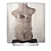 Neolithic Figure Shower Curtain