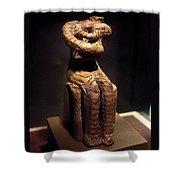 Neolithic Nurse Shower Curtain