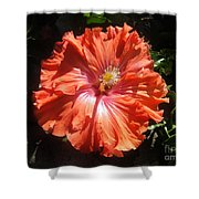 Neon-red Hibiscus 6-17 Shower Curtain