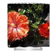Neon-red Hibiscus Flowers 6-17 Shower Curtain
