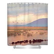 Nephin Dawn Shower Curtain