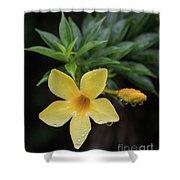 Nerium Oleander In The Rain Shower Curtain