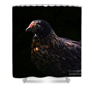 Nervous Little Critter Shower Curtain