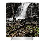 Nest Of Serpents Shower Curtain