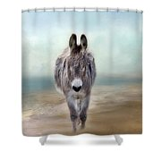 Nester Shower Curtain