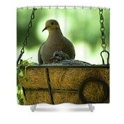Nesting Doves, Hanging Basket, Balcony Garden, Hunter Hill, May  Shower Curtain