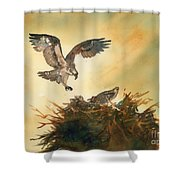 Nesting Ospray Shower Curtain