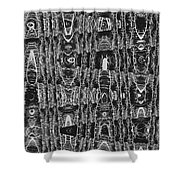 Net Leaf Hackberry Winter  Branch Abstract  Shower Curtain