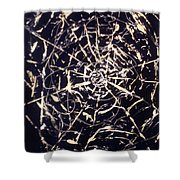 Networks Shower Curtain