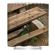 Never Fading Nature Shower Curtain