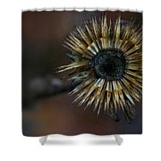 Never The End Shower Curtain