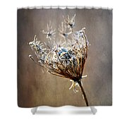 Never Weary Shower Curtain