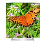 Windows From Heaven Orange Butterfly Shower Curtain