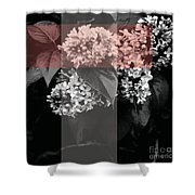New Being Shower Curtain