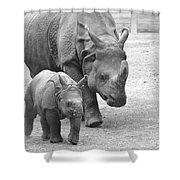New Born Rhino And Mom Shower Curtain