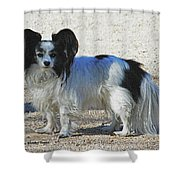 New Dog At The Park Shower Curtain