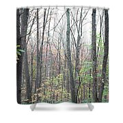 New England Forest Shower Curtain