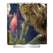 New Friends Shower Curtain by Chris Lord