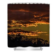 New Gold Dream Shower Curtain