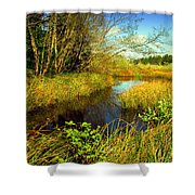New Growth At The Pond Shower Curtain