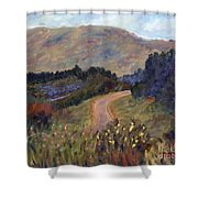 New Hampshire Road Shower Curtain