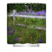 New Hampshire Wildflowers Shower Curtain