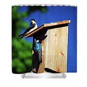 New Home Inspection Shower Curtain