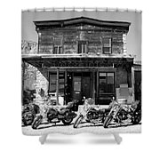 New Horses At Bedrock Shower Curtain by David Lee Thompson