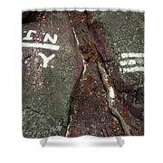New Jersey New York State Line Of The Appalachian Trail Shower Curtain