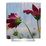 New Jersey Wildflowers In The Wind Shower Curtain