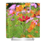 New Jersey Wildflowers Shower Curtain