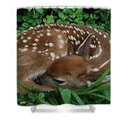 New Life  Shower Curtain