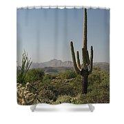New Mexican Desert Shower Curtain