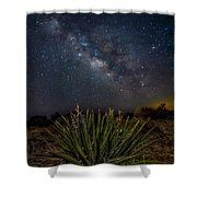 New Mexican Night Shower Curtain