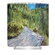 New Mexico Canyon Impression Shower Curtain
