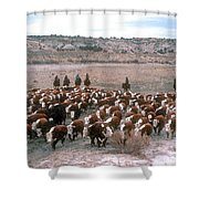 New Mexico Cattle Drive Shower Curtain