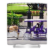 New Orleans Royal Carriage Shower Curtain