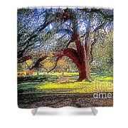 New Orleans Sunday In The Park With George Shower Curtain