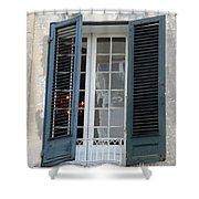 New Orleans Windows 5 Shower Curtain