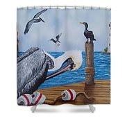 New Point Pelican Shower Curtain