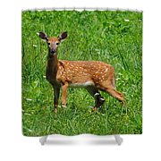 New Spots Shower Curtain
