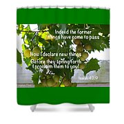 New Things Scripture Shower Curtain