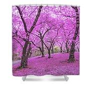 New York City Springtime Shower Curtain