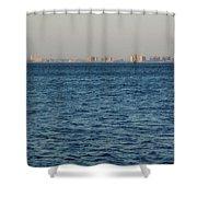New York Skyline Shower Curtain by Robbie Masso