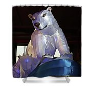 New York State Chinese Lantern Festival 7 Shower Curtain