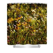 New York Wildflowers Xxvi Shower Curtain