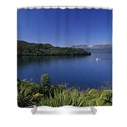 New Zealand, Rotorua Shower Curtain