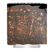 Newspaper Rock Shower Curtain